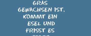 Der Münchentv Spruch Des Tages Münchentv