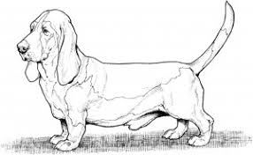 Small Picture Dog Coloring Pages 10108 ColoringBuscom