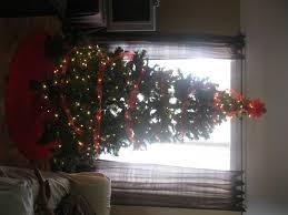 SimplechristmastreeinwindowChristmas Tree In Window