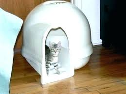 image covered cat litter. Large Covered Cat Litter Box For Big Cats Dome  Hooded A . Image M