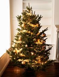 Christmas Christmas Tree Lights Here Are The 3 Best Ways To Hang Christmas Tree Lights