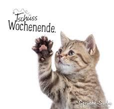 Tschüss Wochenende Abschiedsgruß Mit Katze