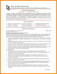 Executive Summary Template Inventory Log Sheet Preparing A Profit