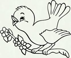 Bird Coloring Pages Free Popular Turkey Outline Of A Running Birds