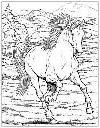 horse horses coloring pages