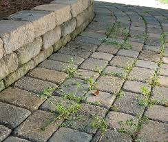 fill joints between pavers