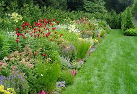 Small Picture Perennial Garden Theory Design Garden Design Inc