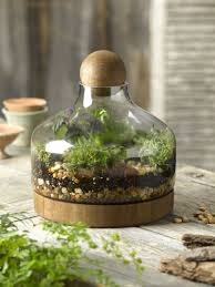 large glass terrarium container bell jars with cover