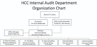 Internal Auditing Houston Community College Hcc