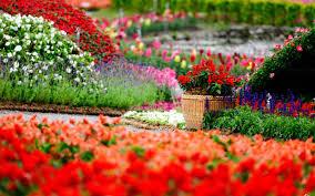 flowers garden. Flowers-Garden-HD-Wallpapers-free-for-desktop Flowers Garden