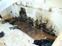 how to get rid of mold on walls in bathroom how to get rid of bathroom