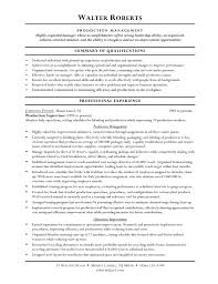 100 Resume Objective Examples For Any Job 100 Resume Skills