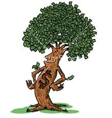 Image result for images of money tree