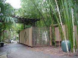Small Picture Home Design Ideas bamboo garden design on bamboo4sale com bamboo