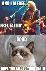 funny on Pinterest | Grumpy Cat, Grumpy Cat Humor and Grumpy Cat Meme via Relatably.com