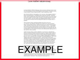love mother nature essay college paper writing service love mother nature essay an essay or paper on a mother s love children and