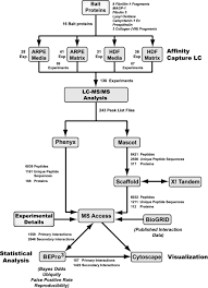 Flow Chart Of Primary And Secondary Data Flow Diagram Showing Experimental Details And Data Anal Open I