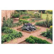 Small Picture 659 best Garden The Vegetable Garden images on Pinterest