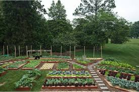 Small Picture Vegetable Garden Layout Ideas gardensdecorcom