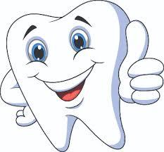 Image result for dental images