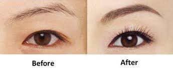 Image result for nano brows