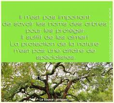 Animé Citation Philosophique Le Jardin Citation Arbre Ecologie