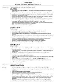 Auditor Job Description Resumes Bank Auditor Resume Samples Velvet Jobs