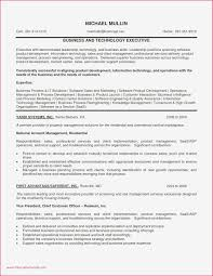 indeed sample resume resume sample indeed archives wattweiler org new resume sample for
