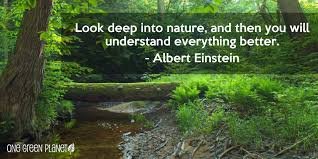 Be one with nature, importance of nature, beauty of nature, albert einstein quotes, better understanding | Healthy Habits to adopt in your twenties | Expressing Life