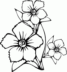 Small Picture Flower Coloring Pages Cute Coloring Pages