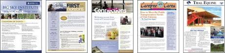 Examples Of Company Newsletters Newsletter Printing And Mailing Services