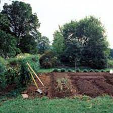 8 steps for making better garden soil