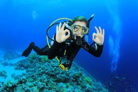 Resultado de imagen de scuba diving