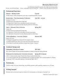 Accounting Essay Proofreading Websites Future Status English