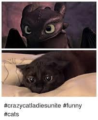 Funny cat pictures Meme Funny Cat Meme Crazycatladiesunite funny cats Meme On Meme