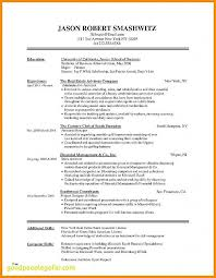 Academic Resume Templates Mesmerizing 28 Academic Resume Template Modern Resume Design Templates