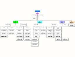 Csu Organizational Chart Csu Faculty Voice A Rube Goldberg Organization