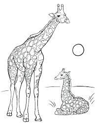 Giraffe Coloring Sheet Pizzafoodclub
