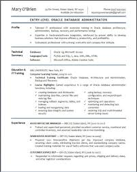 System Administrator Resume Format Doc Free Resume Example And
