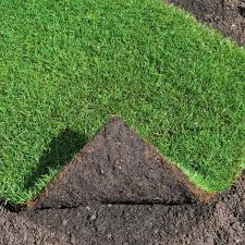 Image result for Turf