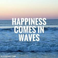 Surfing Quotes Adorable Surfing Quotes Happiness Comes In Waves Quotes Pinterest