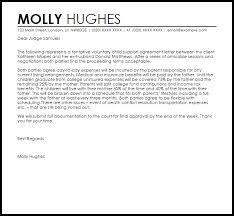 Voluntary Child Support Agreement Letter Example Letter Samples