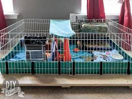 diy base for a midwest guinea pig cage