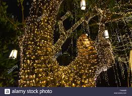 Easy Way Hang Christmas Lights Outdoor Decorative Outdoor String Lights Hanging On Tree In The