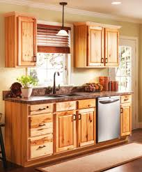 20 Awesome Ideas For Unfinished Kitchen Base Cabinets Paint Ideas