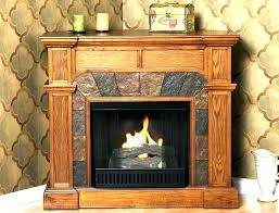 gel fuel fireplace insert burning inserts s indoor paramount