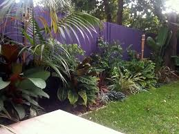 Small Picture Tropical Garden Design and Construction Sydney Landscapers Sydney