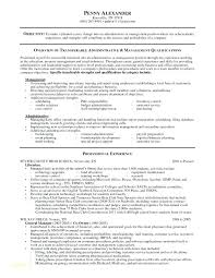 Good Skills To Put On Resume For Nanny Great A Examples Teller Unique Special Skills To Put On Resume