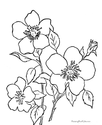 Spring Flower Coloring Pages Free Coloring Pages For Children