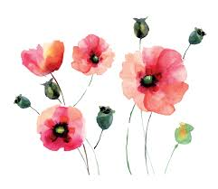 home decor line watercolor poppies wall decal reviews wayfair on poppy wall art stickers with wallpops home decor line watercolor poppies wall decal reviews